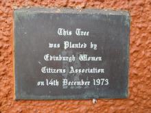 Plaque and Tree: Edinburgh Women Citizens Association